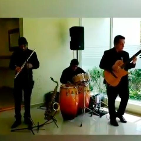 Flute Guitar Trio