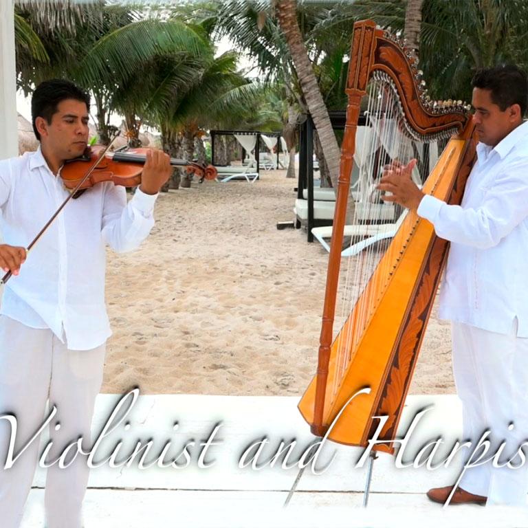 Violin Harpista