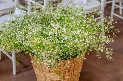 Babys Breath Large Basket For Aisle