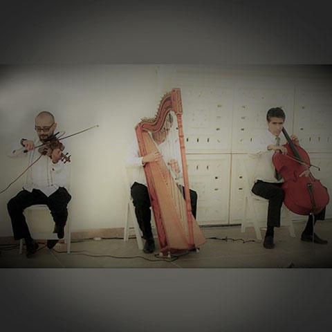 Violinist Harpist Cellist Trio
