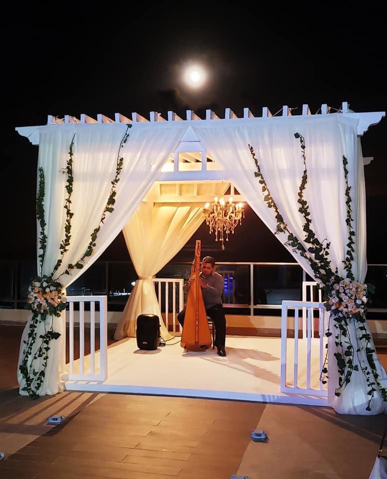 Weddings Planning Harpist