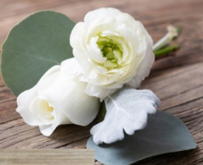White Ranunculus Buttoniere With Rose, Dusty Miller And Silver Dollar Eucalyptus
